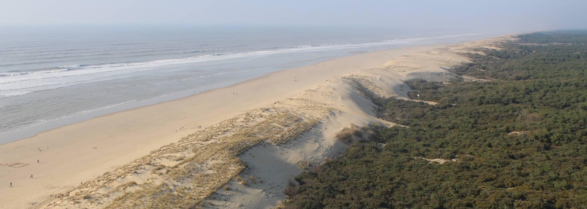 Le littoral de la Côte Sauvage vu du phare - ©P.Migaud / FDHPA 17