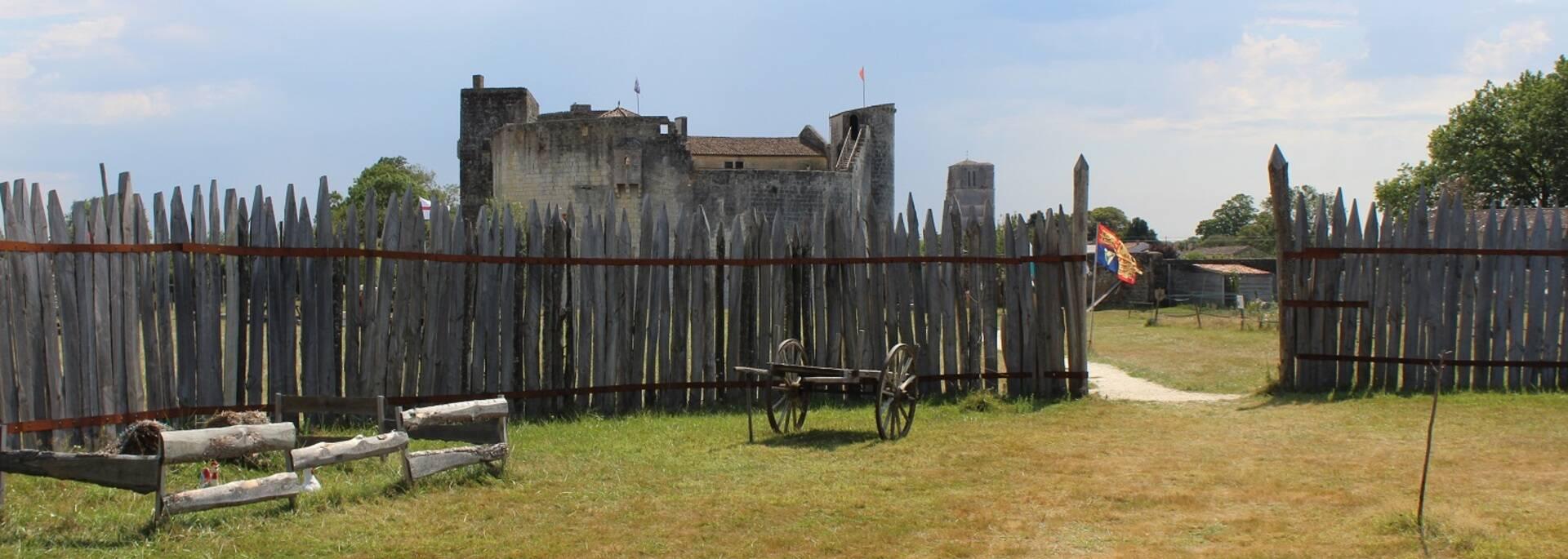 Intérieur de la motte castrale au château fort de Saint-Jean d'Angle - ©P.Migaud / FDHPA17