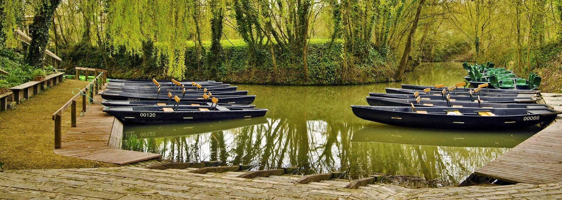 Barques dans le Marais Poitevin - ©Shutterstock
