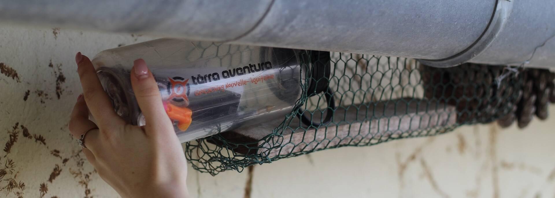 Découverte de la cache du parcours Tèrra Aventura - ©P.Migaud / FDHPA17