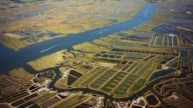 Vue aérienne de la Seudre - ©FDHPA17