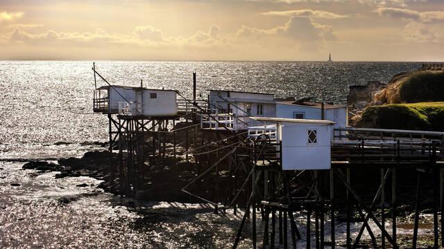 Alignement de carrelets sur la côte royannaise - ©Shutterstock