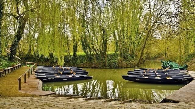 Barque dans la Venise Verte - ©Shutterstock