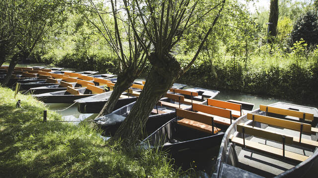 Barques dans les canaux du Marais Poitevin