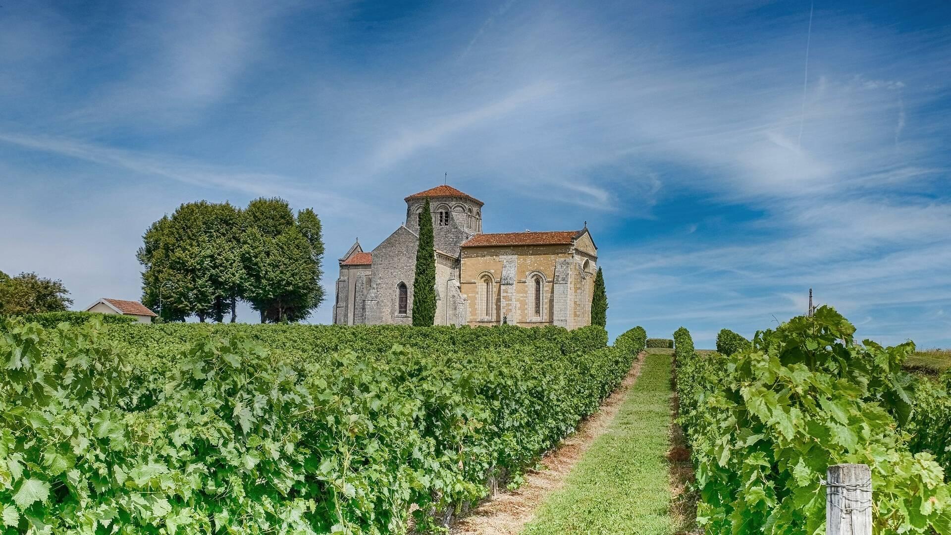 Eglise romane dans le vignoble du cognac - ©Shutterstock