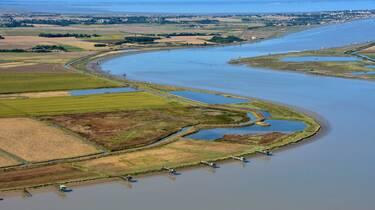 L'estuaire de la Charente - ©FDHPA17