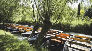 Barques dans les canaux du Marais Poitevin - ©Shutterstock