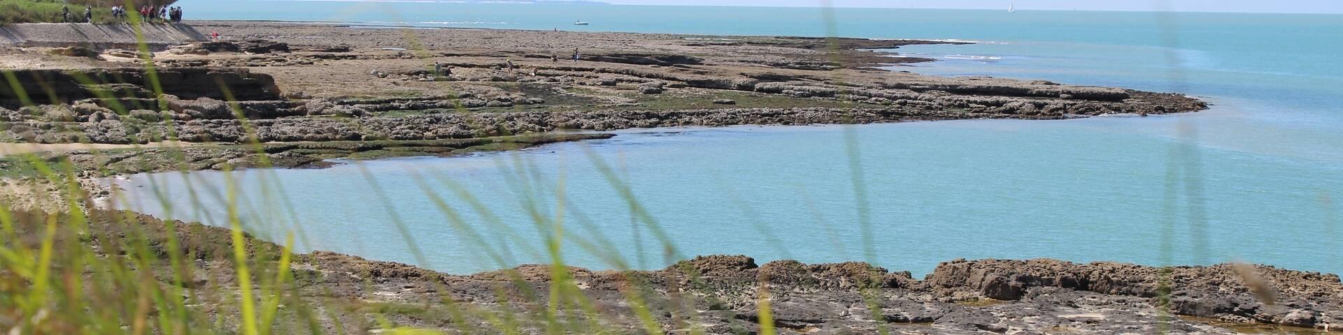 Vue de la côte sur l'île d'Oléron