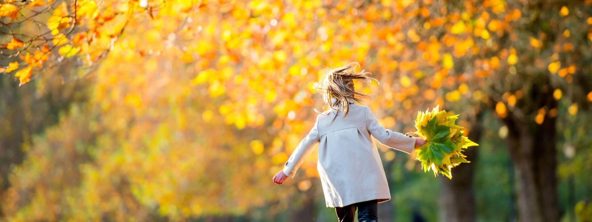 Les couleurs de l'automne en Charente-Maritime - ©Shutterstock