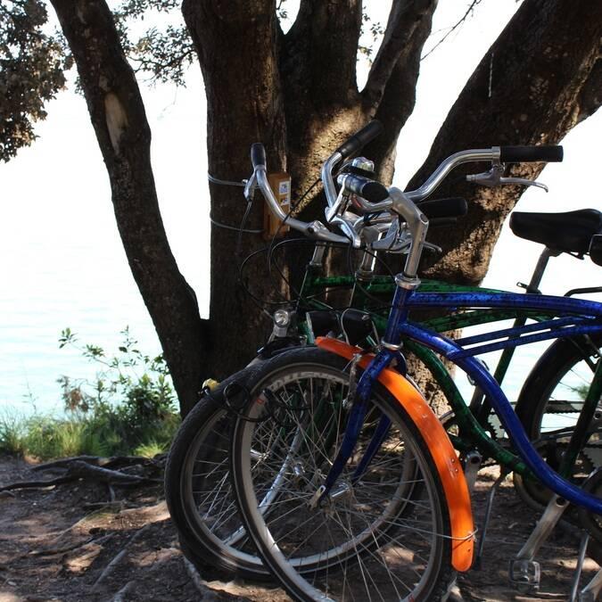 Balade à vélo sur l'île d'Aix - P.Migaud FDHPA17