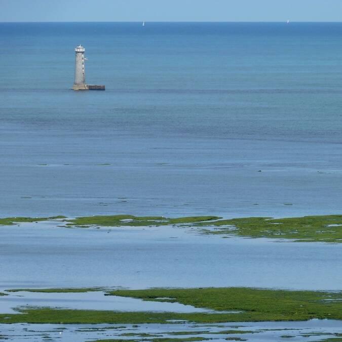Au loin, le phare des baleineaux - ©P.Migaud / FDHPA17