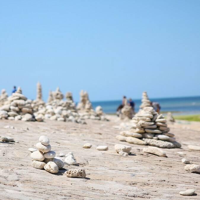 Sculptures naturelles sur une place du nord de l'île de Ré -  ©PW Photographie / FDHPA17