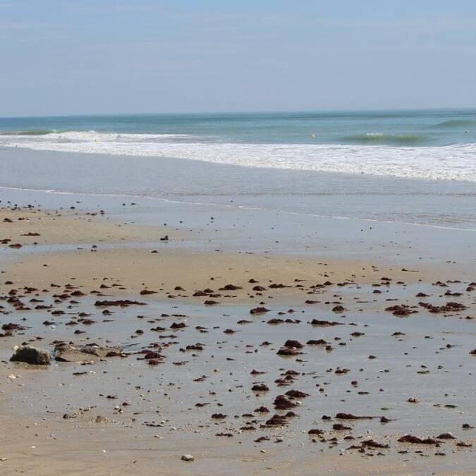Grande plage de sable blanc sur l'île de Ré - ©P.Migaud / FDHPA17