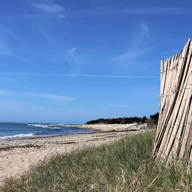 Vue d'une plage du nord de l'île d'Oléron - ©P.Migaud / FDHPA17