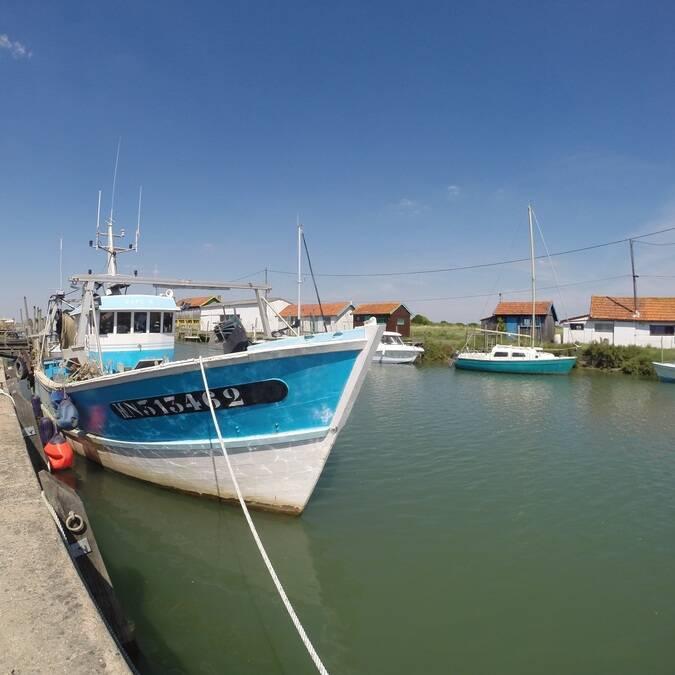 Port de la Grève à La Tremblade - ©P.Migaud / FDHPA 17