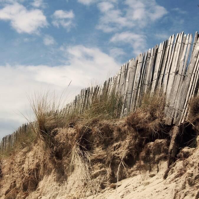 Dunes d'une plage de l'île de Ré