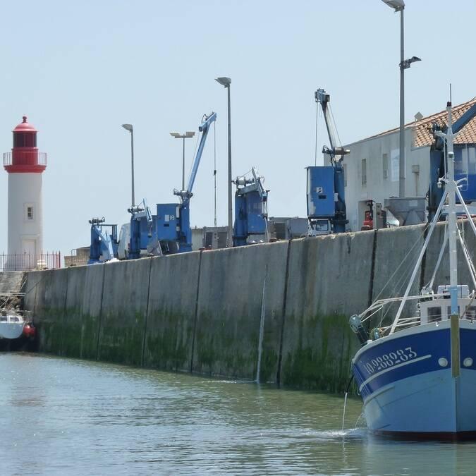 Le port de pêche de la Cotinière - ©P.Migaud / FDHPA17